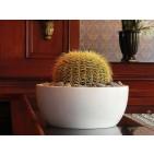 Vienna Round Tabletop Planter Bowl