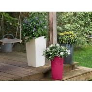 Lechuza Cubico Color-Molded Planter
