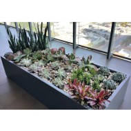 Selenge Rectangle Fiberglass Planter