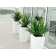 Toulan Tall Tapered Square Fiberglass Planter