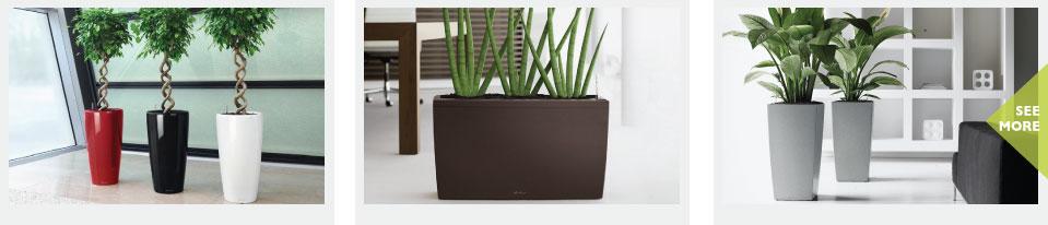 Modern European Planters
