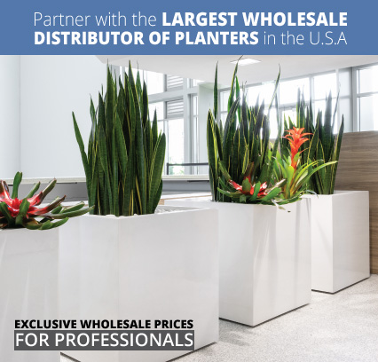 Partner with the largest wholesale distributor of planters in the USA