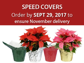 Order your holiday speed covers by September 29th to ensure delivery!
