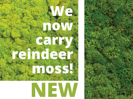 We carry the newest plant containers available